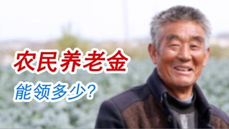 农民有养老金吗?退休后能领多少钱?原来是这么算的