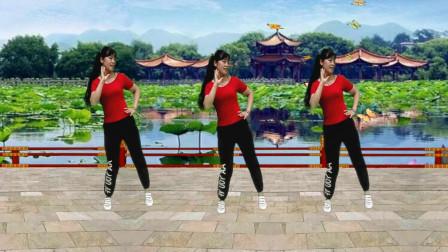 流行广场舞《花恋一只蝶》动感时尚64步,简单又好看