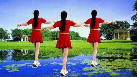 中老年零基础水兵舞,简单易学又好看《流泪的飞蛾》背面