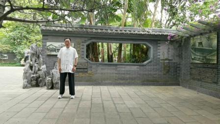 赵幼斌弟子许明,云南昆明翠湖演练传统太极拳85式
