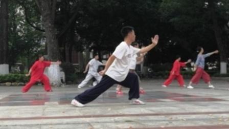 晨练太极,韶关市中山公园