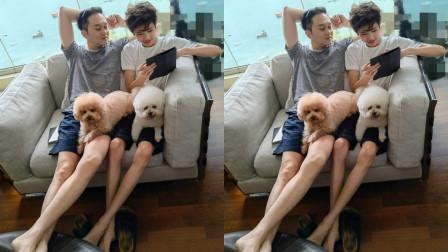 袁咏仪晒张智霖和儿子合照庆父亲节 父子俩同款坐姿长腿吸睛