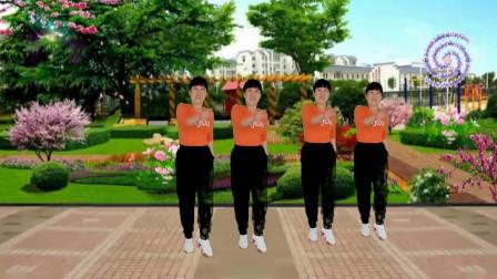 郴州冬菊广场舞【爱情劫匪】火爆网红64步大众健身舞