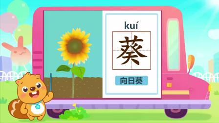 贝瓦识字系列之植物主题:葵