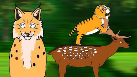 山猫抚养了一只可爱小老虎