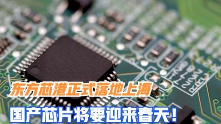 美国慌了!东方芯港正式落地上海,国产芯片将要迎来春天!