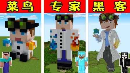 MC:菜鸟,专家,黑客,比赛建造游戏大神