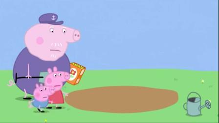 小猪佩奇:小鸟们也太聪明了,稻草人不管用,还是吃掉了种子!