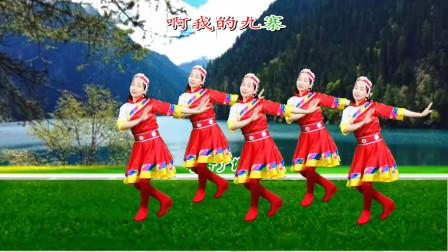 火爆流行藏族舞《我的九寨》欢快动听,大气豪迈,简单好看附教学