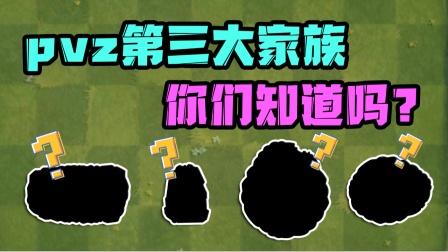"""植物大战僵尸:pvz2第三大家族你们知道吗?全都是""""老实人"""""""