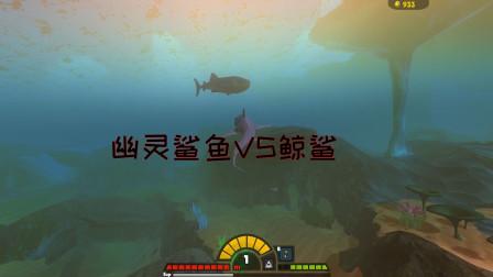 海底大猎杀:幽灵鲨鱼VS鲸鲨和虎鲸!鲨鱼大战鲸鱼