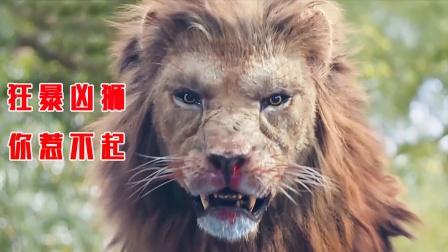 狂暴凶狮入侵城市,所到之处寸草不生