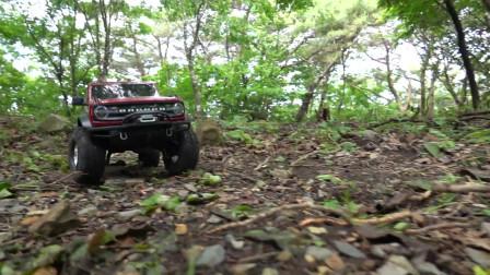 2021 Bronco Traxxas TRX-4 森林探险