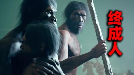 进化到200万年前,我终于是个人了【人类早期进化视频】