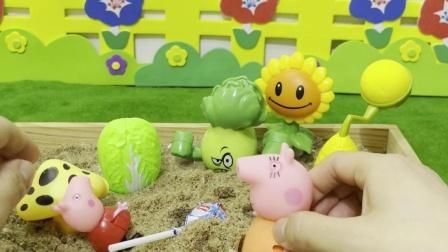猪妈妈教训佩奇不能把糖果种在土里