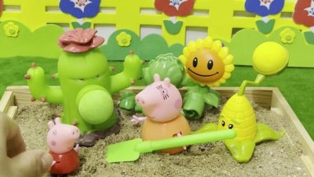 猪妈妈跟佩奇说仙人掌是不能吃的