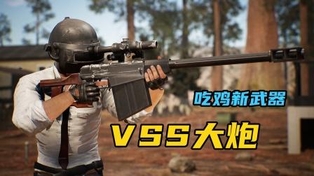 吃鸡新武器:VSS伤害这么大了?一枪击倒穿三级甲的敌人