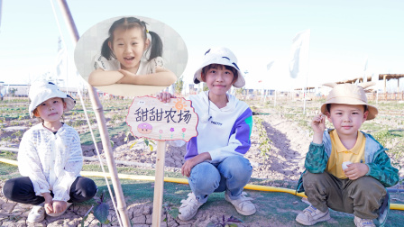 农场vlog:粉丝甜甜认领农场,苏菲娅和艾米儿帮她做农场牌