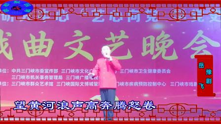 豫剧《岳飞》 选段《精忠保国还我河山》(演唱:三门峡戏曲研究中心 李永利)