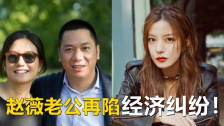 赵薇老公再陷经济纠纷!被上诉追讨近3亿港元2年前曾遭名媛讨债