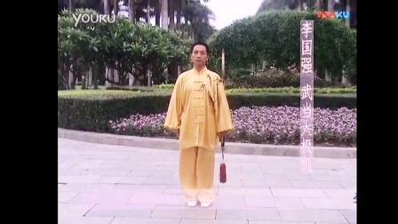 49式武当太极剑—李国强