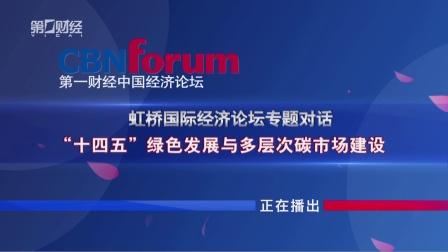 《中国经济论坛》十四五绿色发展与多层次碳市场建设