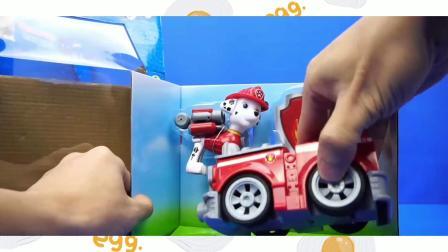 小狗毛毛有红色的小汽车!