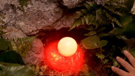 小伙捡到一颗蛋 孵出40米的巨兽(中)