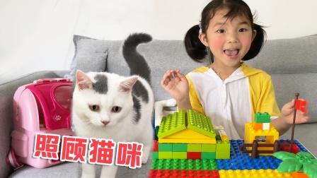 猫咪故事:萌宝和爸爸一起给小猫咪洗澡