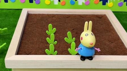 怪兽吃兔子的胡萝卜,被发现了