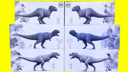 展示侏罗纪霸王龙和南方巨兽龙公仔玩具
