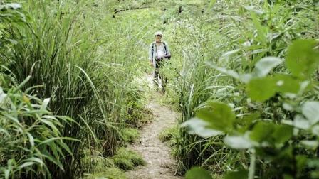 荒山中藏着个村庄,男子以为是世外桃源,谁料这里竟是人间炼狱