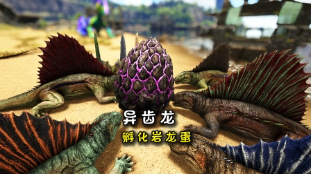 方舟209:抓了一堆异齿龙,孵化岩龙蛋