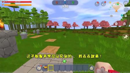 迷你世界:忆涵需要挑战甘蔗林地,这样才能救出小青龙