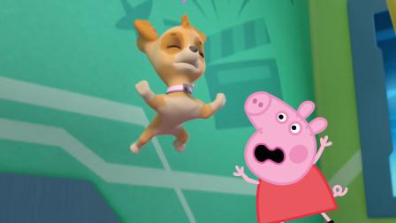 小猪佩奇帮助汪汪队立大功天天
