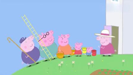小猪佩奇:黑莓这么可爱,猪爷爷特别的不喜欢,总感觉在瞪着自己