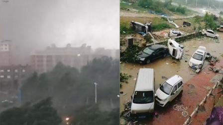 山东莘县龙卷风过境:汽车被掀翻,树枝窗户狼藉一片