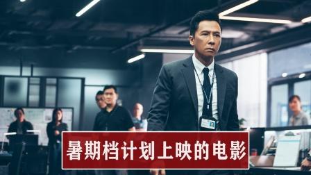 暑期档上映3大必看电影,甄子丹的动作大片,张子枫续写校园故事