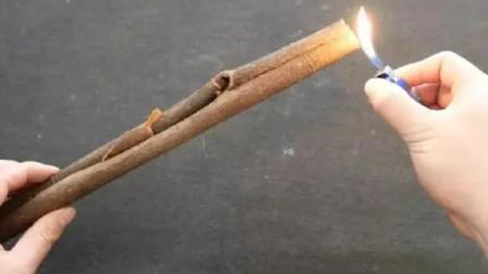 桂皮用打火机烧一烧,放卫生间真强大,花再多钱也难买,提醒家人