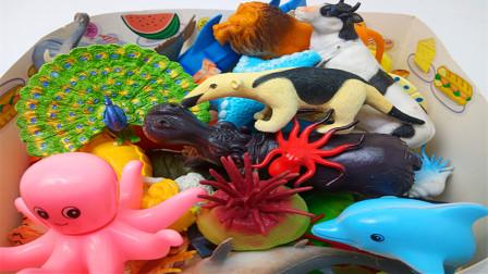 认知陆地动物和海洋生物,海胆梅花鹿孔雀等