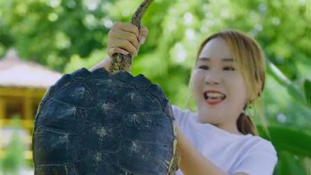 20买的鳄龟,足足有12斤重,肉感太鲜美