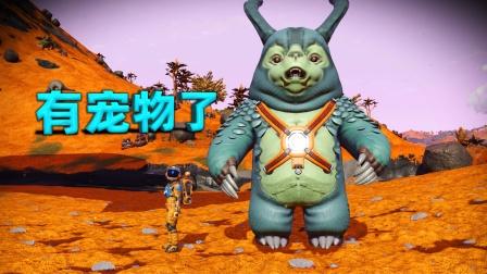 无人深空04:我在一个星球上抓了一只提莫,有宠物了!