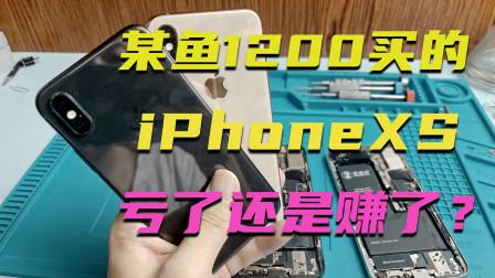 某鱼1200淘的iPhoneXS,拿来当备用机刚刚好,你觉得划算吗