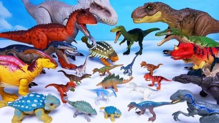 不同样式的翼龙和彩色恐龙玩具