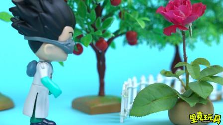 猫头鹰女的花 被罗密欧挖走做实验