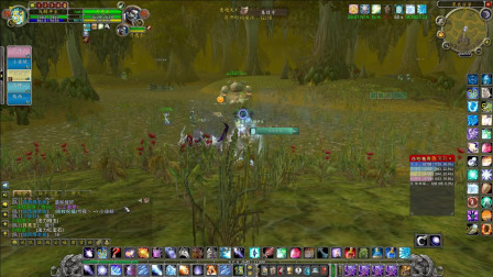 魔兽世界怀旧服:英雄黑色沼泽灭散了太多野队,配合到位轻一次过