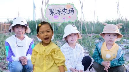 农场vlog:粉丝果冻认领农场,苏菲娅和艾米儿帮她制作了农场牌