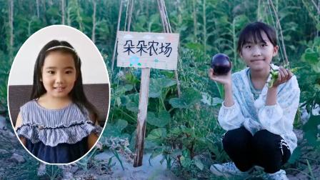 农场vlog:粉丝朵朵认领农场,艾米儿帮她制作了漂亮的农场牌