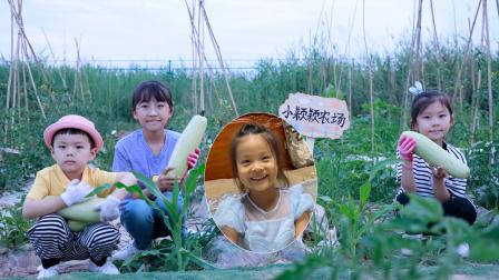 农场vlog:粉丝小颖颖认领农场,艾米儿帮她制作了漂亮的农场牌