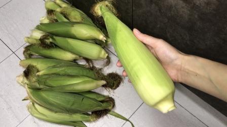 趁着玉米便宜好吃,分享一个保存妙招,放一年都不坏,味道一样好